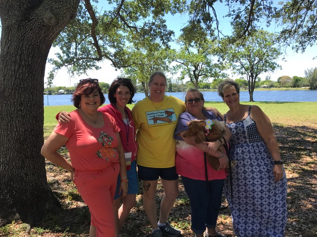Meet Jennifer Hessley And Pam Weiner Of Dachshund Rescue South Florida Voyage Mia Magazine Miami City Guide